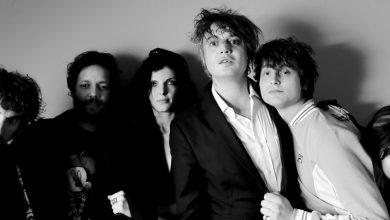 """Photo of Escuchá la nueva canción de Pete Doherty & The Puta Madres: """"Paradise Is Under Your Nose"""""""