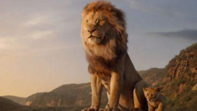 """Photo of Mirá el primer trailer oficial que lanzó Disney de la película """"El rey león"""""""